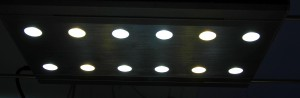 ECOplant LED Formosa