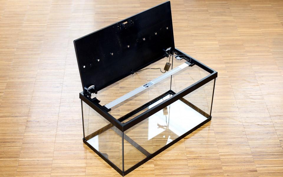 eheim aquastar 54 led test neues zum thema meerwasser nrw dein meerwasser forum aus nrw. Black Bedroom Furniture Sets. Home Design Ideas