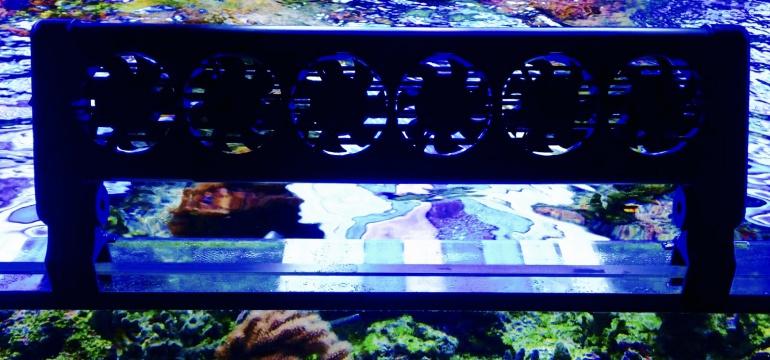 aquarium temperatur zu hoch blog aquapro2000. Black Bedroom Furniture Sets. Home Design Ideas
